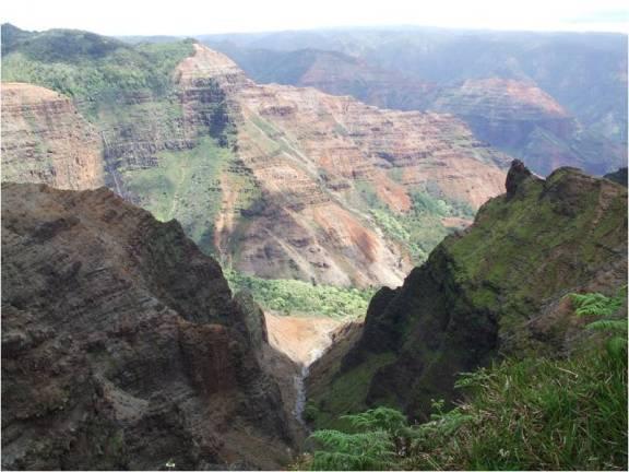 Gully - Kauai