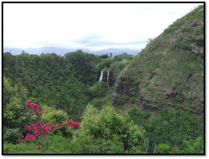 Distant view of the falls with the red flowers