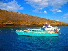 Hawaii2010 021