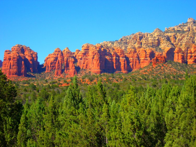 Arizona 2014 115