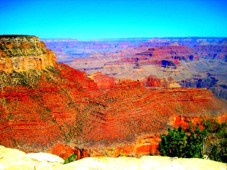 Arizona 2014 160
