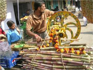 Man selling sugarcane juice