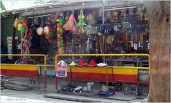 Not your typical Toys R Us Store in a village in India